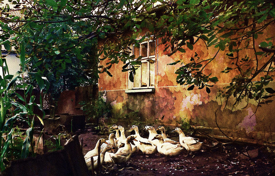 Rural Photograph - Old Ukrainian Village by Julie Palencia