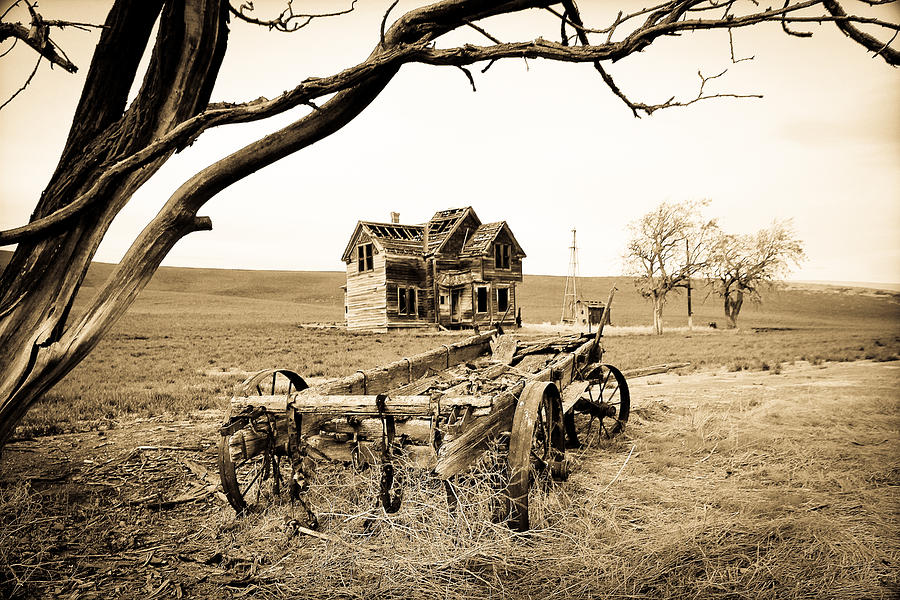 Covered Wagon Photograph - Old Wagon And Homestead II by Athena Mckinzie