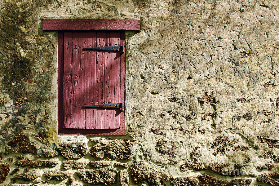 Wall Photograph - Old Wall And Door by Olivier Le Queinec