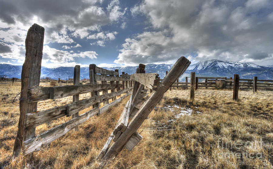 Corral Photograph - Old Washoe Corral by Dianne Phelps