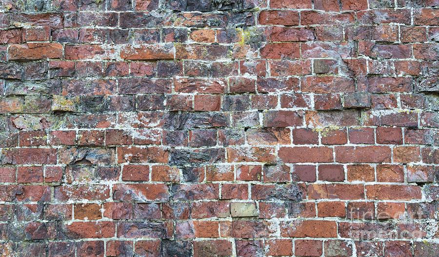 Old Photograph - Old Worn Red Brickwork Pattern by Tim Gainey
