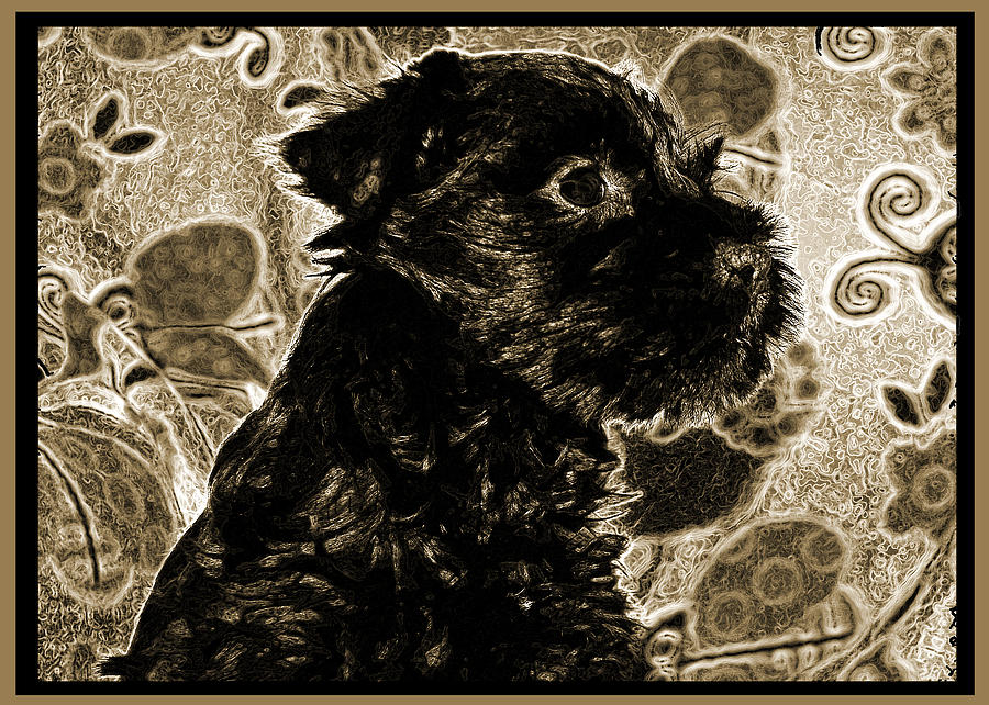 Schnauzer Photograph - Olde World Canine by Brian Graybill
