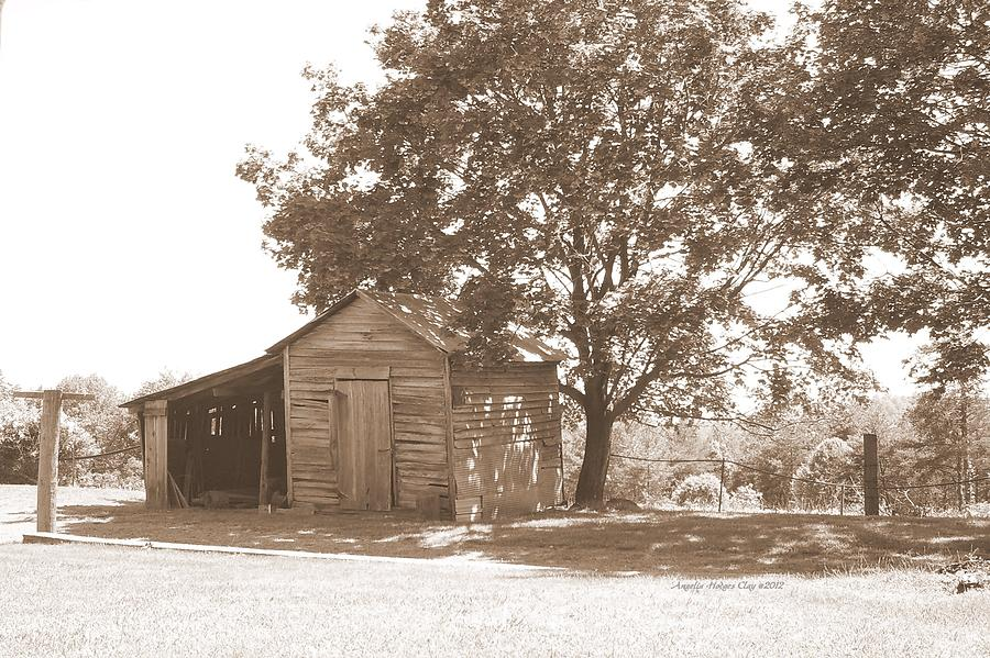 Barn Digital Art - Ole Homeplace by Angelia Hodges Clay
