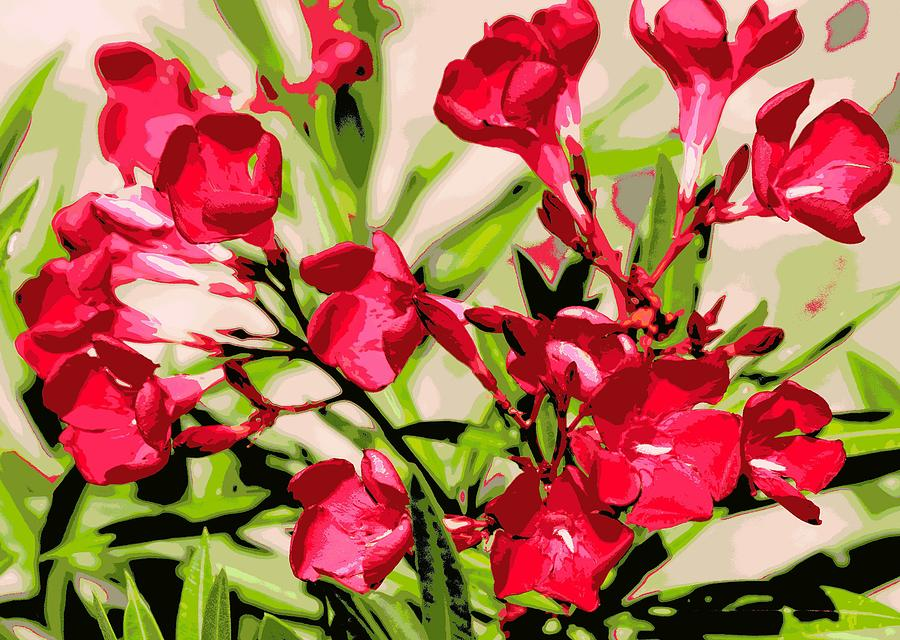 Oleander Photograph - Oleander Red by Sheri McLeroy