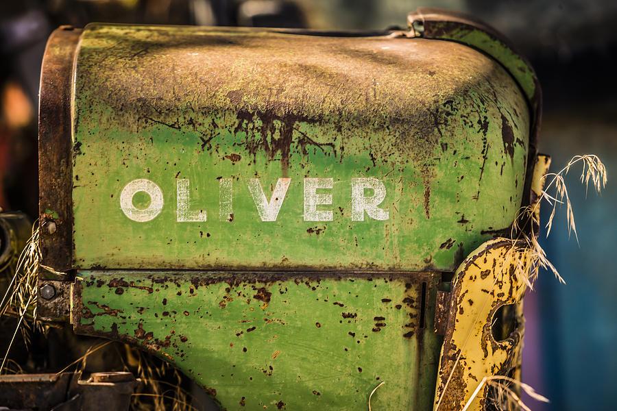 Vintage Photograph - Oliver by Steve Smith