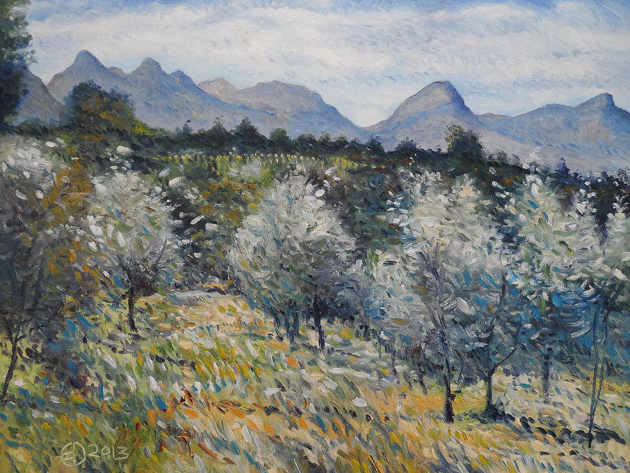 Impressionism Painting - Olives At Diemersfontein Cape South Africa. by Enver Larney