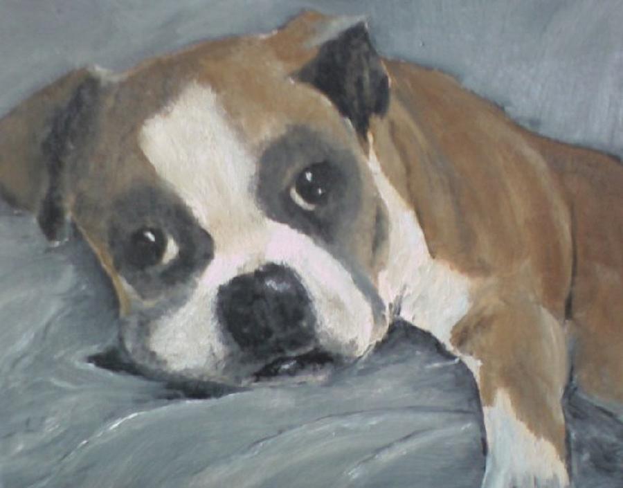 Boxer Painting - Omar by Susan Richardson