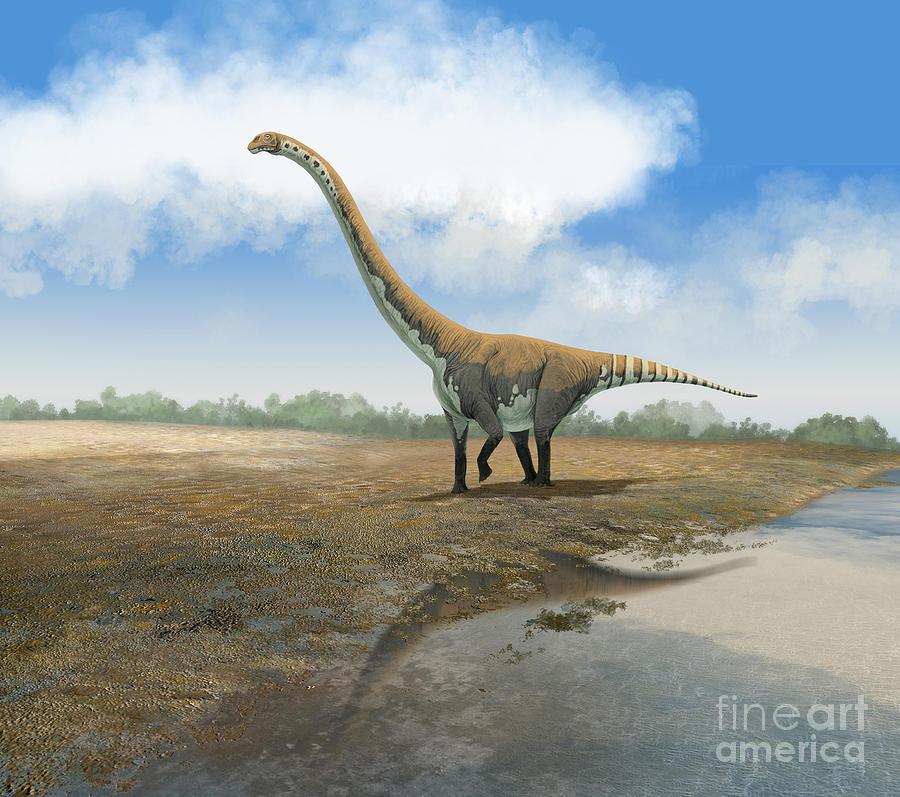 Horizontal Digital Art - Omeisaurus Tianfuensis, An Euhelopus by Roman Garcia Mora
