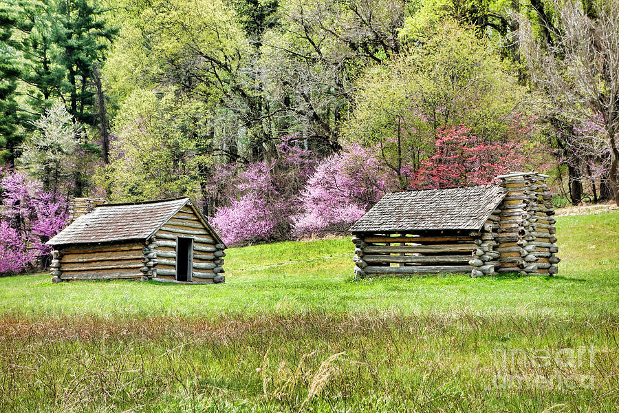 Valley Photograph - On A Hill At Valley Forge by Olivier Le Queinec