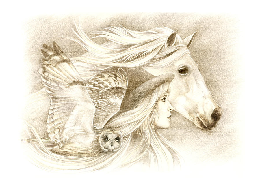 Horse Drawing - On A Journey... by Johanna Pieterman