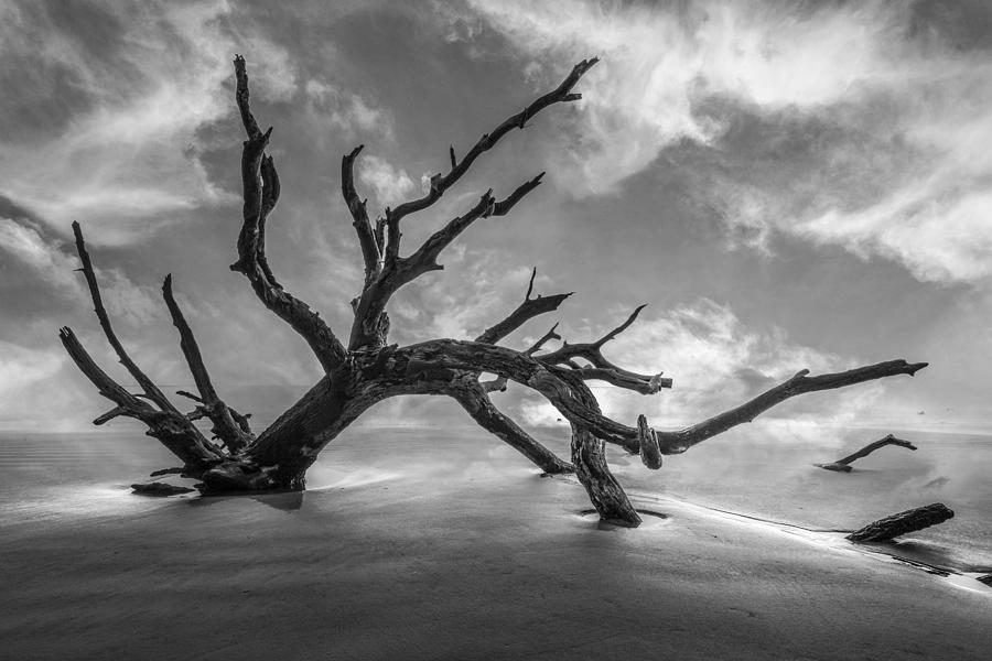 Clouds Photograph - On A Misty Morning In Black And White by Debra and Dave Vanderlaan