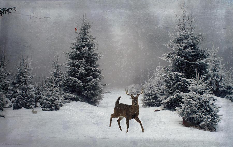 Winter Digital Art - On A Snowy Evening by Lianne Schneider