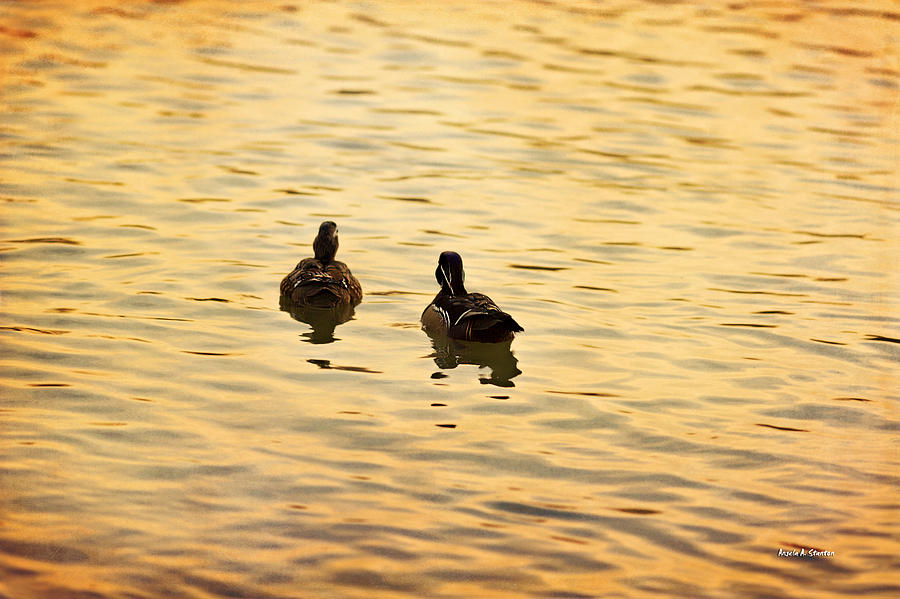 Texture Photograph - On Golden Pond Ducks by Angela A Stanton