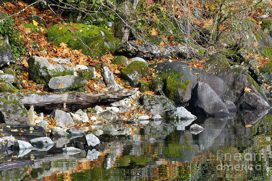 Rocks Photograph - On The Edge Of The Lake by Sharon Talson