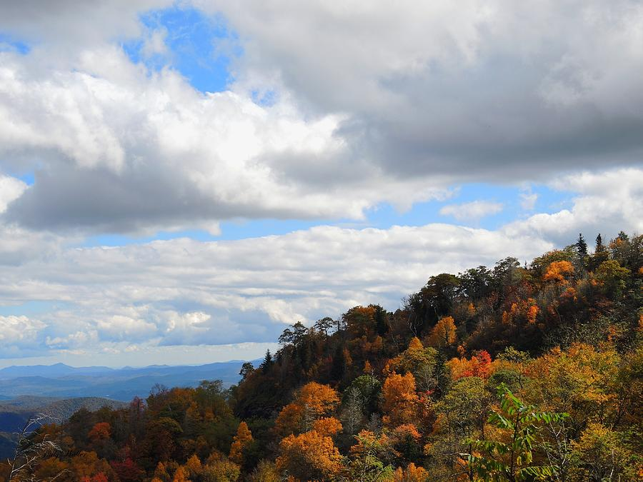 Autumn Photograph - On The Mountain by Judy  Waller