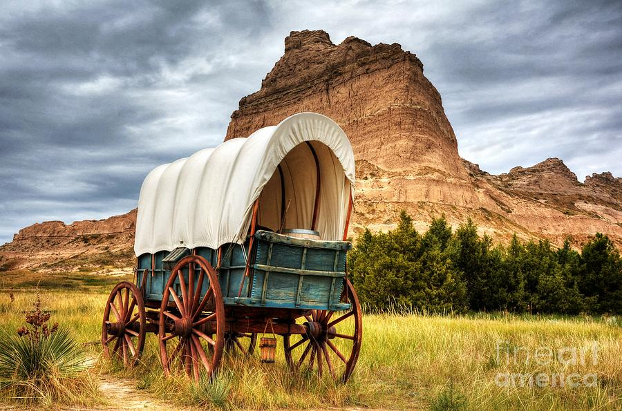 On The Oregon Trail by Mel Steinhauer