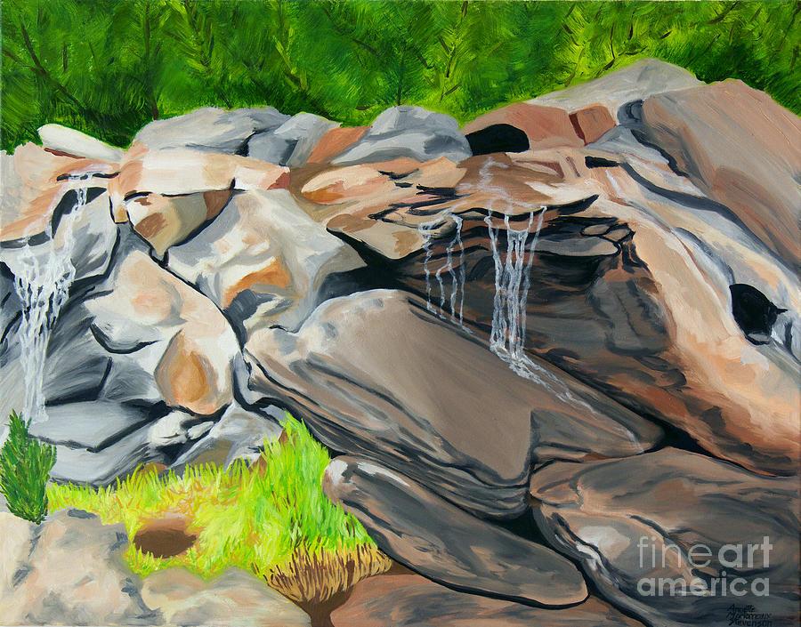 fineartamerica.com - On The Rocks by Annette M Stevenson