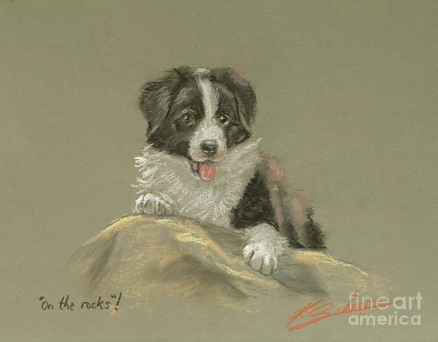 Dog Paintings Pastel - On The Rocks by John Silver