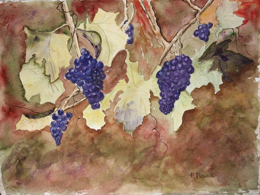 Grapes Painting - On The Vine by Patricia Novack
