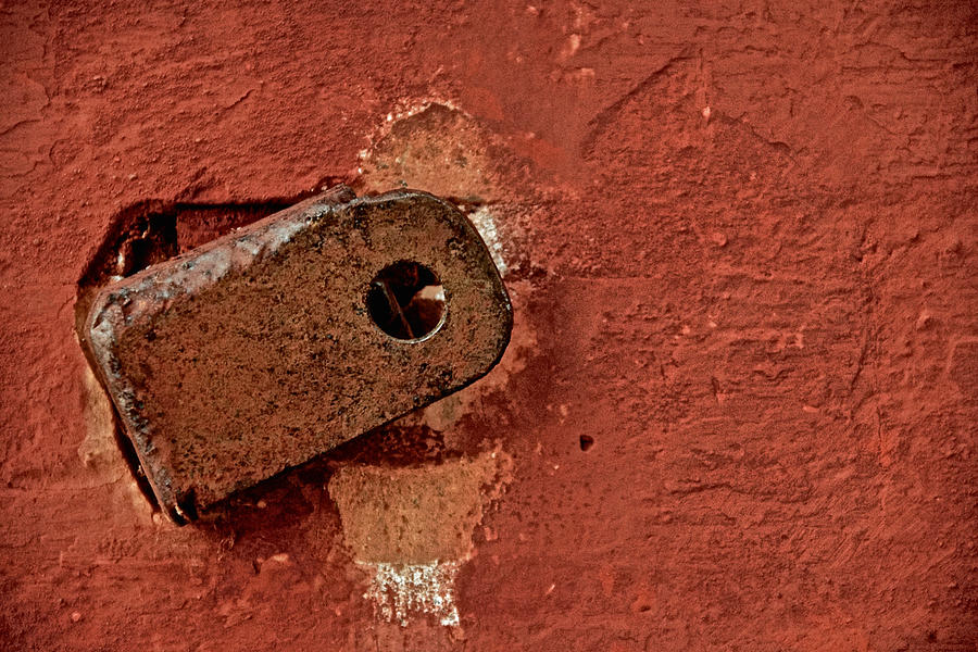 Wall Photograph - On The Wall by Odd Jeppesen