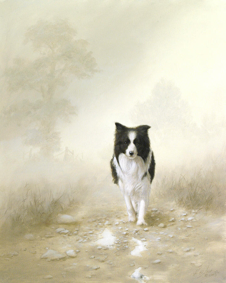 Border Collie Painting - On The Way Home by John Silver