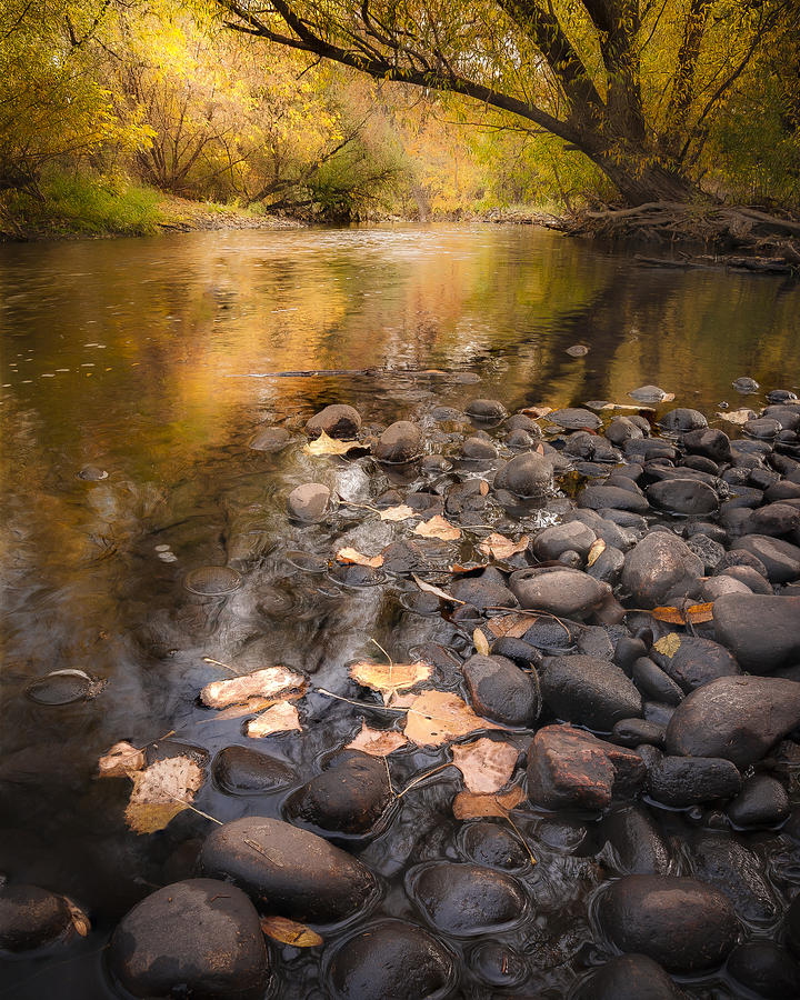 Fall Photograph - Once Upon A Fall by Michael Van Beber