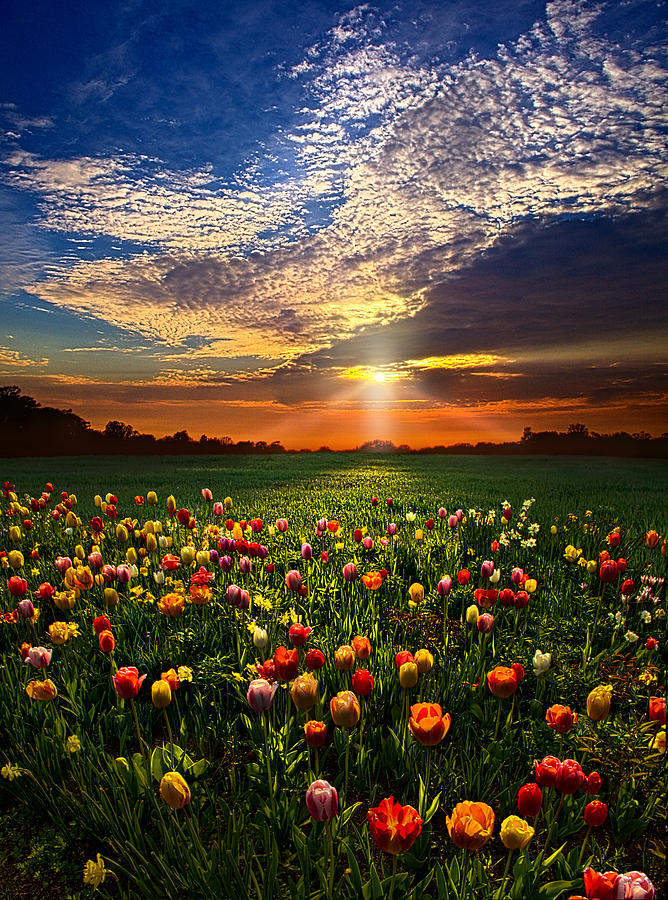 Horizons Photograph - Once Upon A Time by Phil Koch