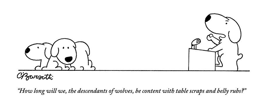 One Dog Speaks On A Podium To Several Drawing by Charles Barsotti