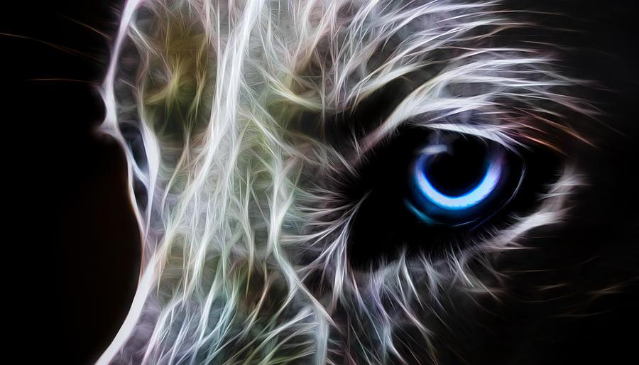 Wolf Digital Art - One Eye by Aged Pixel