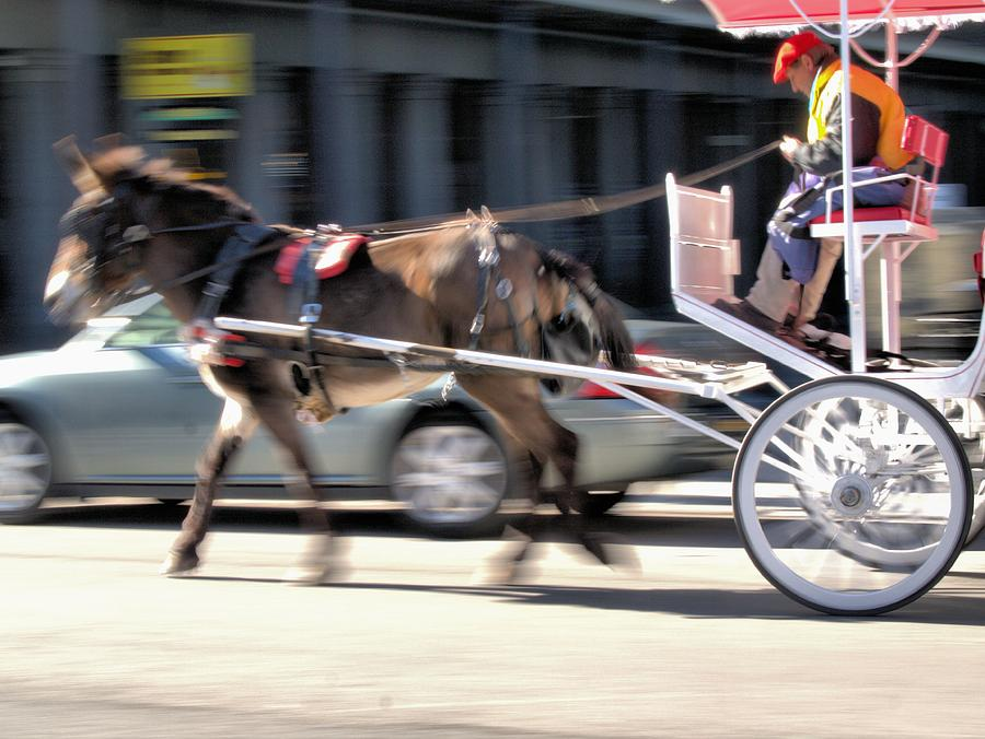 Horse Power Photograph - One Horse Power by Anthony Walker Sr