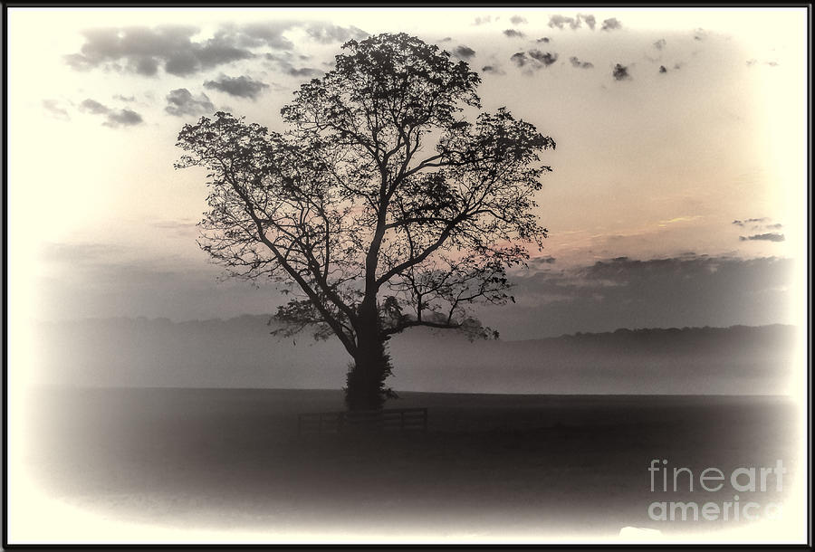 Baltimore County Photograph - One by Joe McCormack Jr