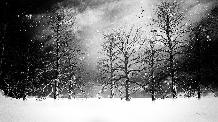 Winter Photograph - One Night In November by Bob Orsillo