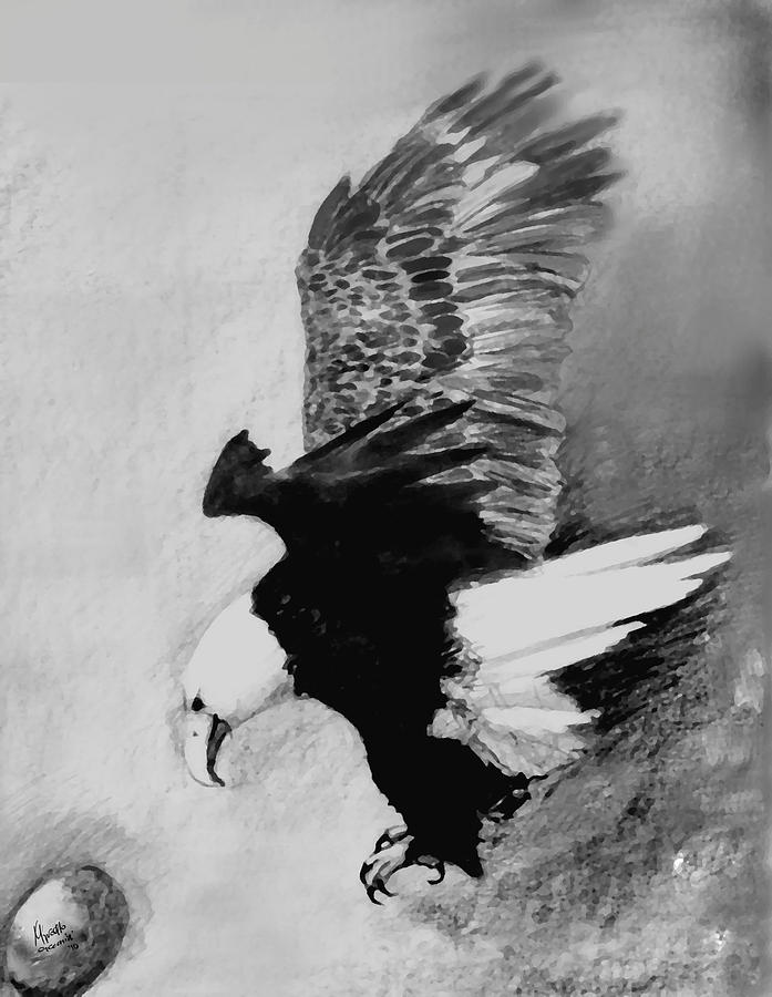 Pencil Digital Art - One Of My Eagles by Marcello Cicchini