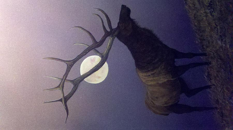 Wildlife Painting - One Small Step by Dan Parsons