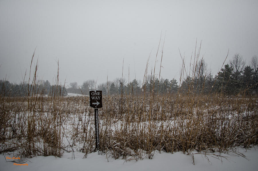 Winter Photograph - One Way by Dan Crosby