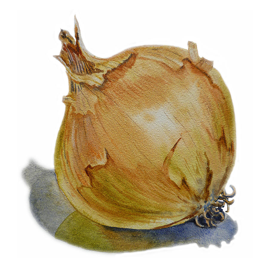 Onion Painting - Onion by Irina Sztukowski