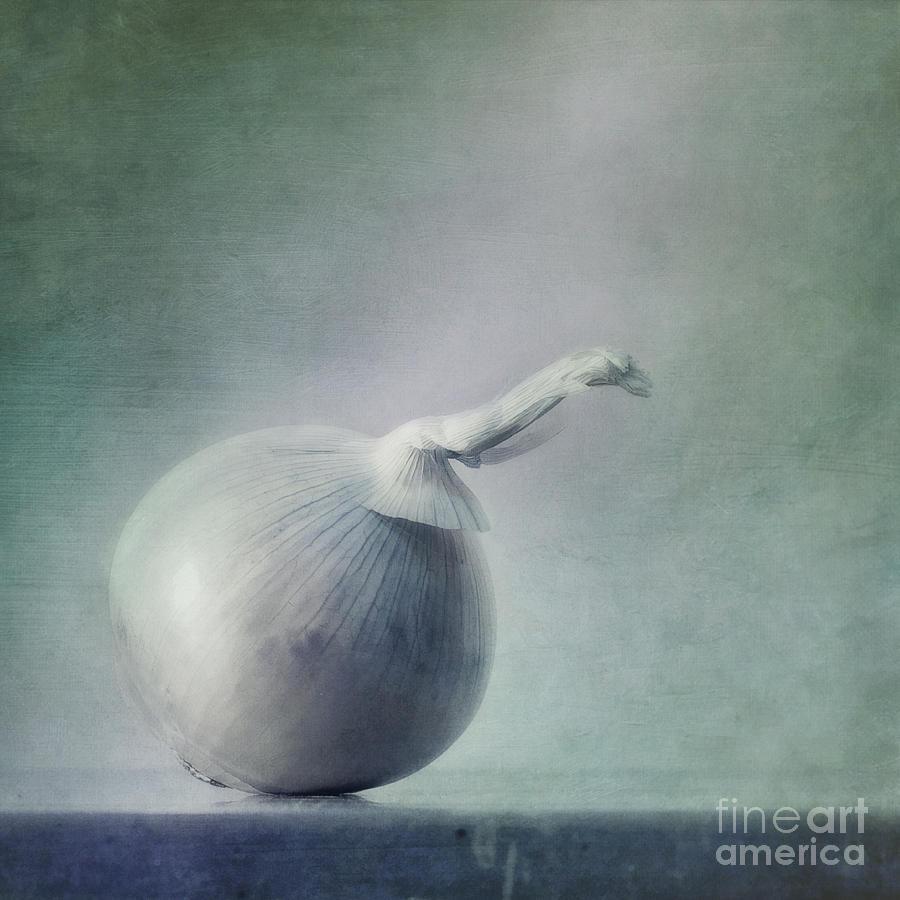 Zwiebel Photograph - Onion by Priska Wettstein