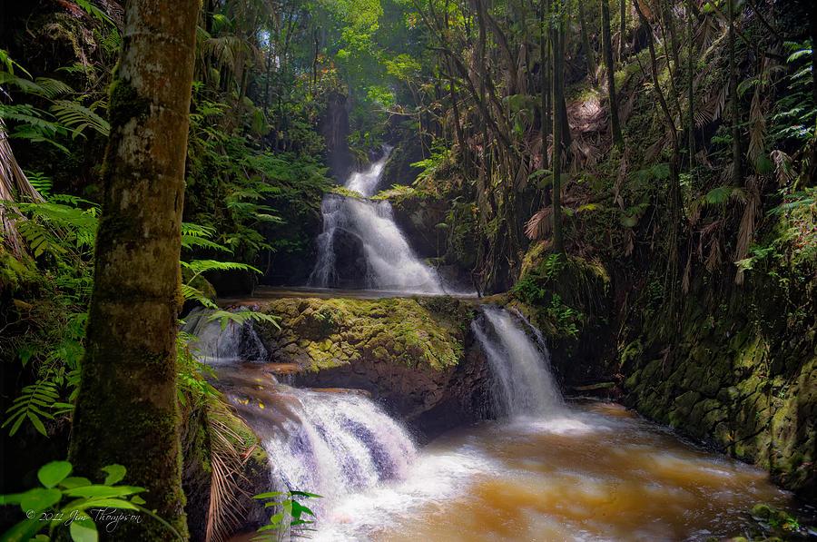 Waterfall Photograph - Onomea Falls by Jim Thompson