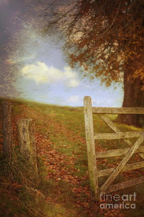 Open Photograph - Open Country Gate by Amanda Elwell