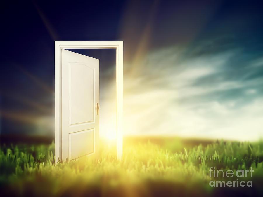 Door Photograph - Open Door On The Green Field by Michal Bednarek