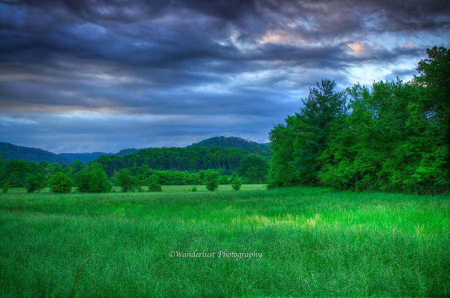 Pasture Photograph - Open Pasture by Paul Herrmann