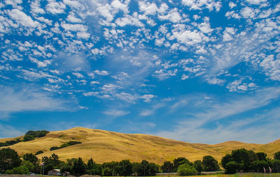 Napa Valley Photograph - Open Sky by Rima Biswas