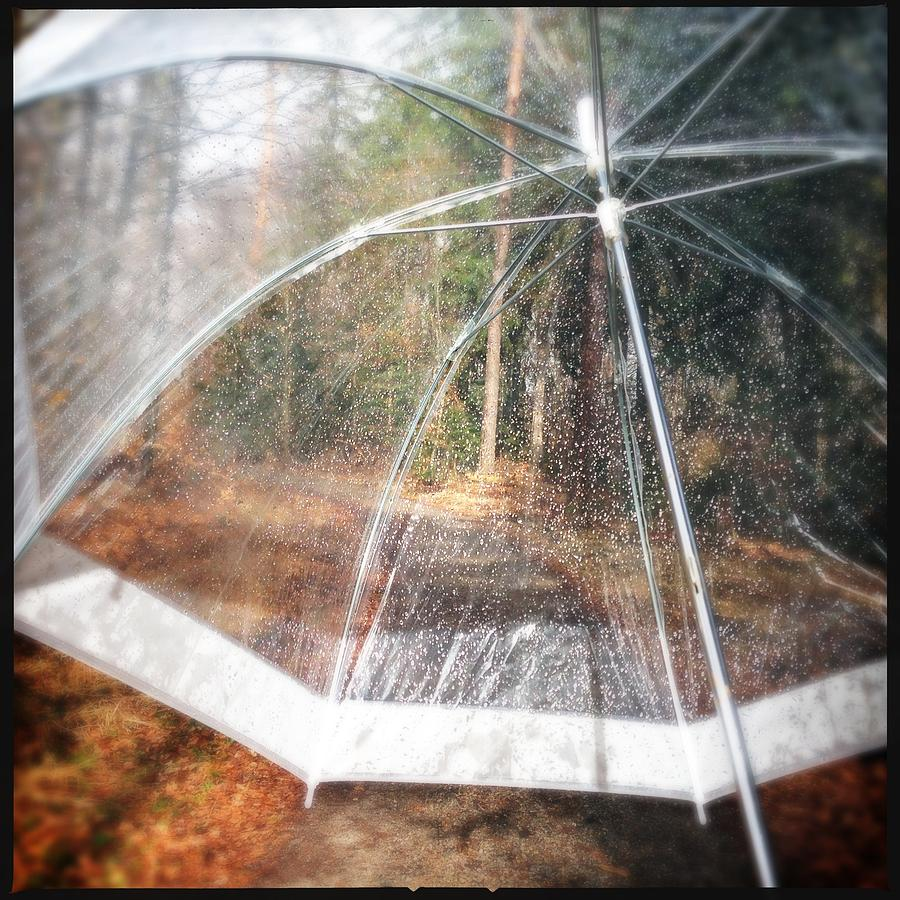 Umbrella Photograph - Open umbrella with water drops in the forest by Matthias Hauser
