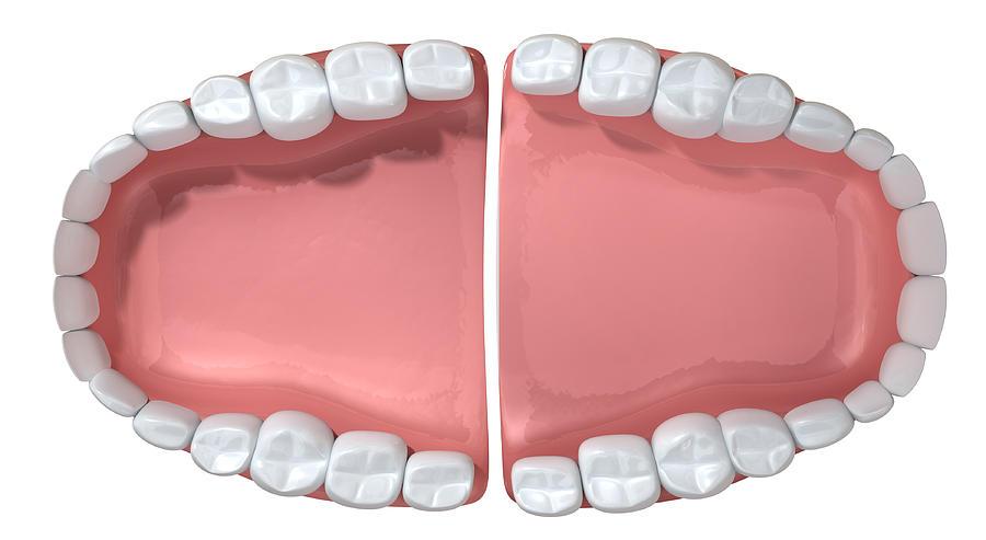 Teeth Digital Art - Open Wide by Allan Swart