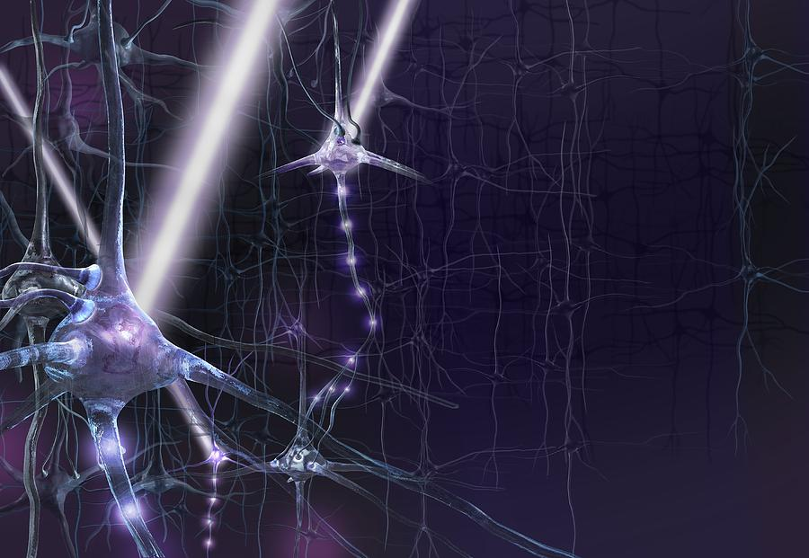 Biology Photograph - Optogenetics, Conceptual Artwork by Science Photo Library