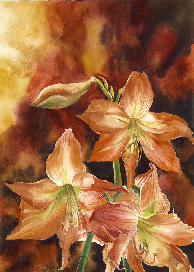 Flower Painting - Orange Amaryllis by Alfred Ng