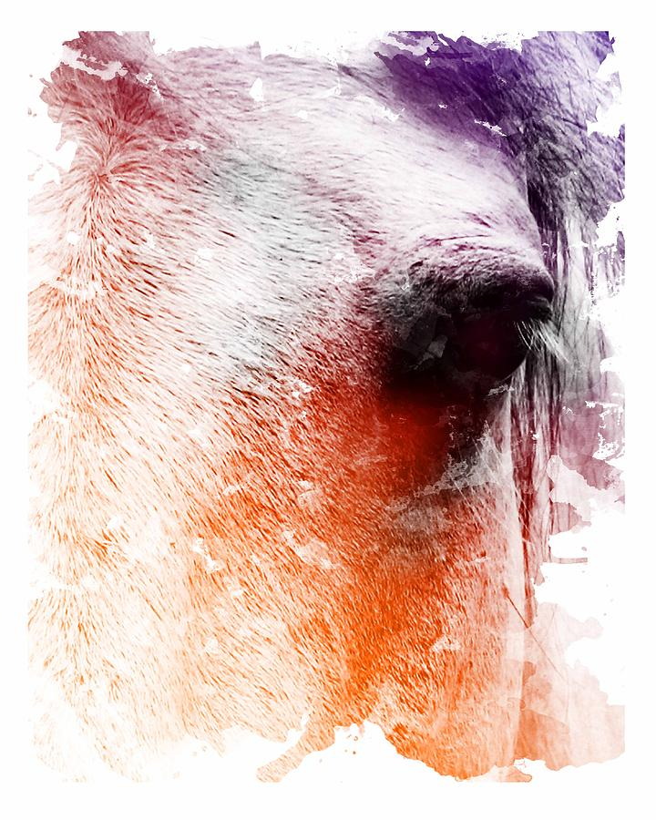 Horse Digital Art - Orange And Violet Abstract Horse by Diana Shively