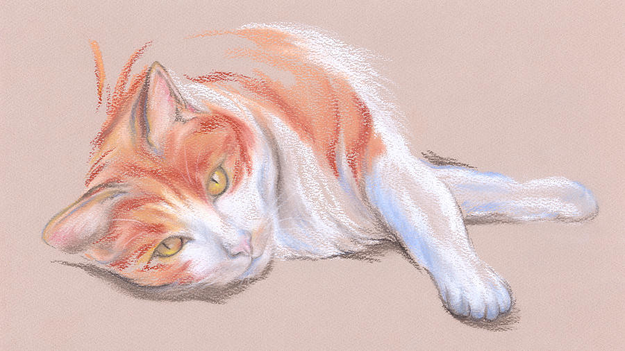 Orange And White Tabby Cat With Gold Eyes Pastel By Mm Anderson