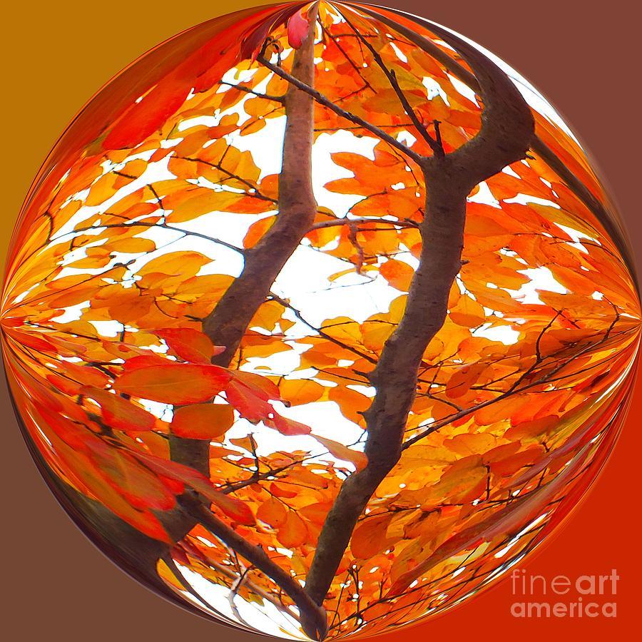 Art Deco Photograph - Orange Art Deco by Scott Cameron