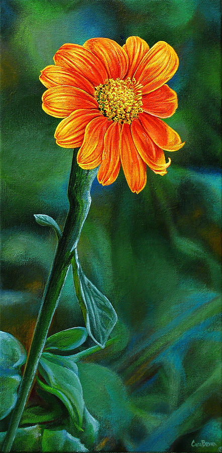 Orange Painting - Orange Aster by Cara Bevan
